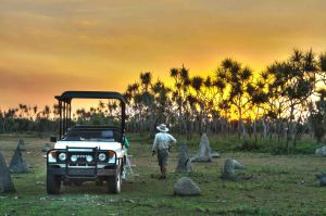 Enjoying sundowners in the pandanus forest at the edge of the Mary River Floodplain at Bamurru.