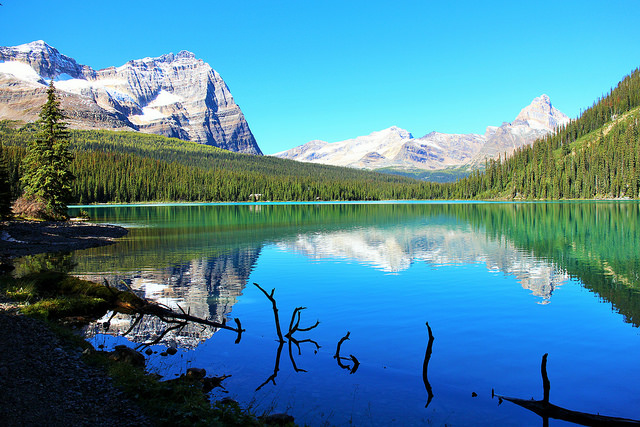 Lake OHara by Coughlin