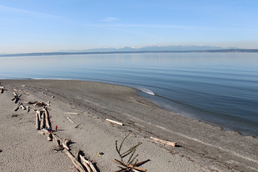 Carkeek Park - South Bluff Trail