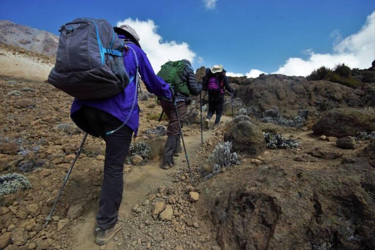 Acclimation hike through the Alpine Desert vegetation zone.